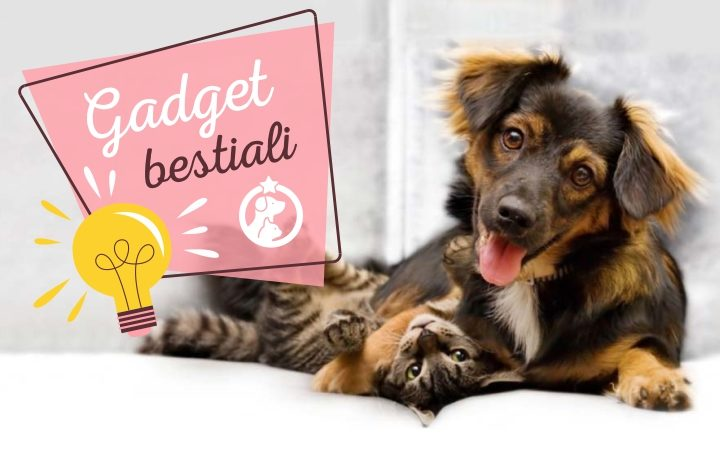 Gadget personalizzati animali