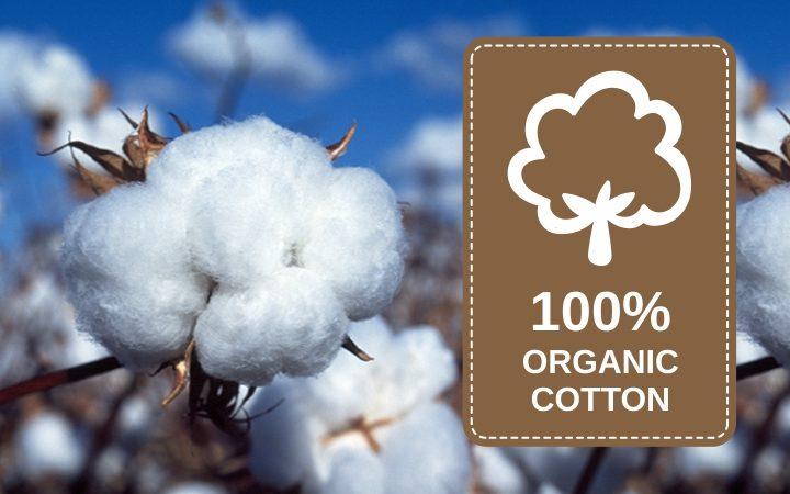 Abbigliamento Cotone Organico